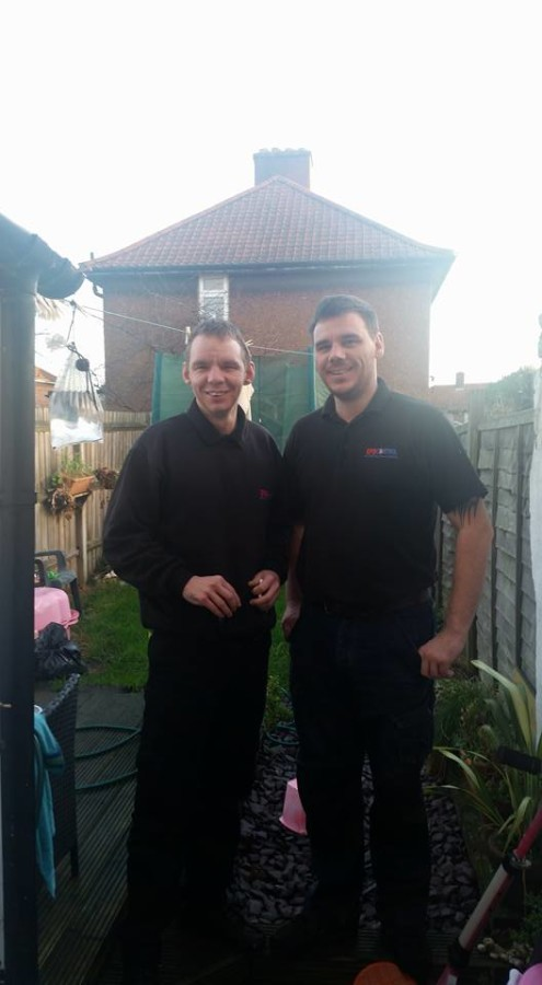 pest control brentwood and Essex